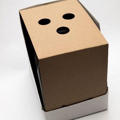 Display-box_klein